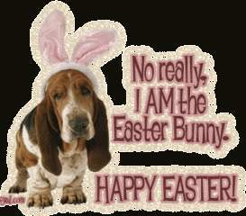 Doggyeaster