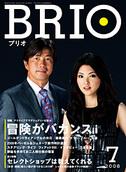 Brio_20080524